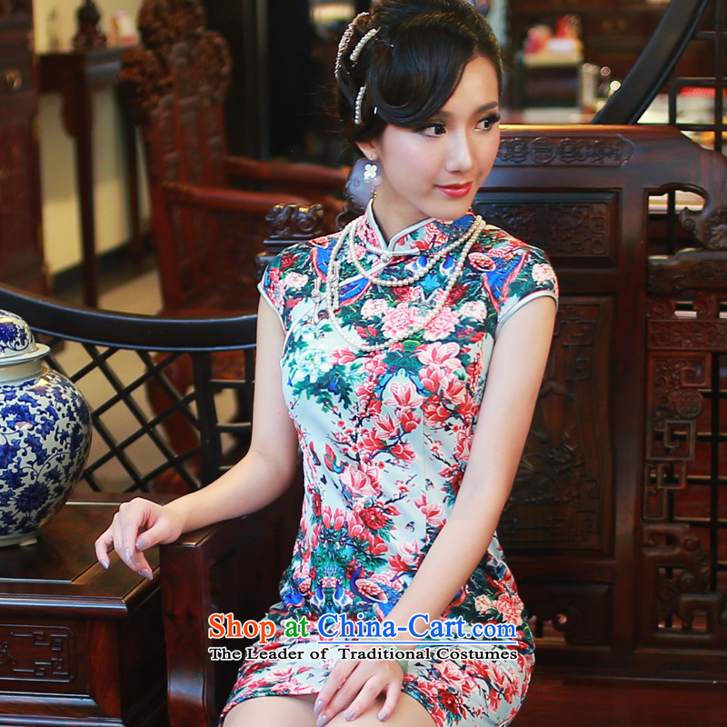 The 2014 autumn new) Ms. qipao skirt improved daily temperament and stylish Sau San cheongsam dress�4507th light blue backplane�M