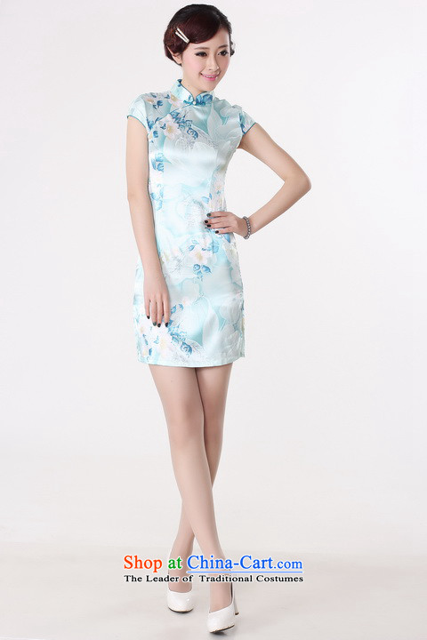 Dan smoke new cheongsam dress summer improved retro collar is pressed to hand-painted silk cheongsam dress short Chinese improvement of light blue 2XL Photo, prices, brand platters! The elections are supplied in the national character of distribution, so action, buy now enjoy more preferential! As soon as possible.