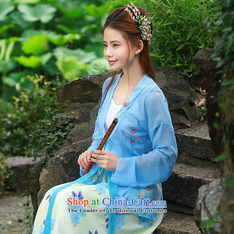 Time-to-day Han-Syrian women's national costumes also featured a Han Chinese waist-You can multi-select attributes by using Terminal Apron of the Song Dynasty and chest blue costume fairies replacing light blue also featured a sub-and skirt