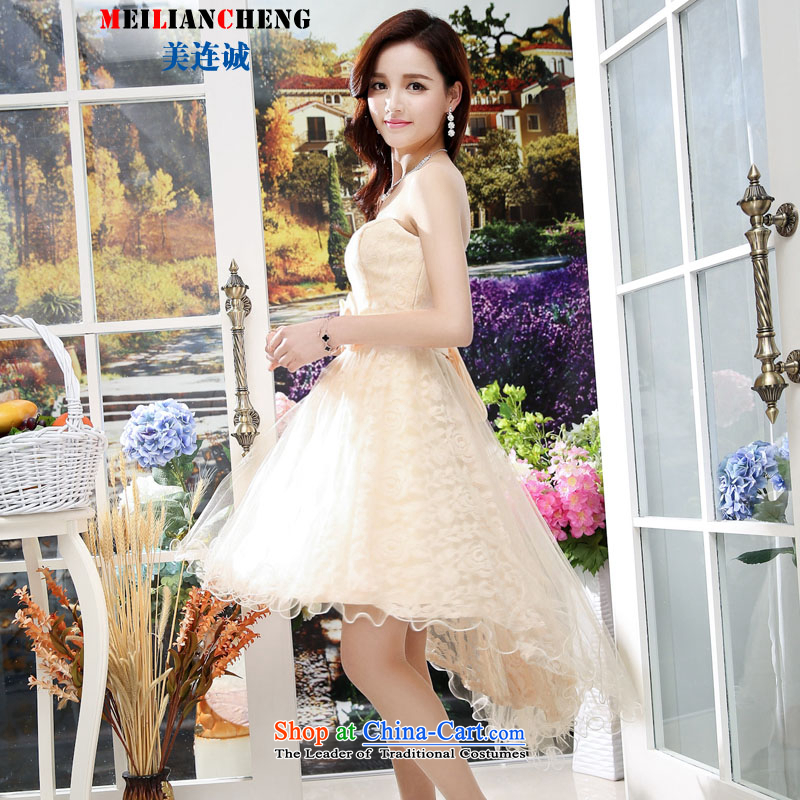 Mei Lin Shing 2015 new women's summer wrapped in the breast of long skirt sleeveless large-dress dresses apricot?M