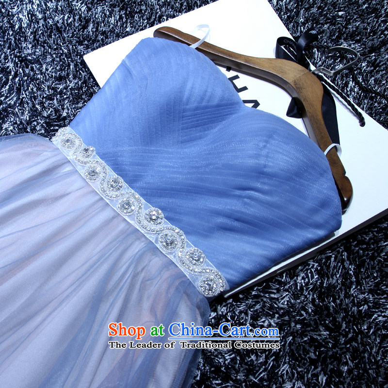 2015 New banquet dress blue Sau San sexy anointed chest tasteful minimalist style dinner drink dresses marriage under the auspices of dress skirt female light blue?M
